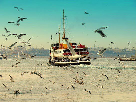 Turkey Tours by Local Guides cover