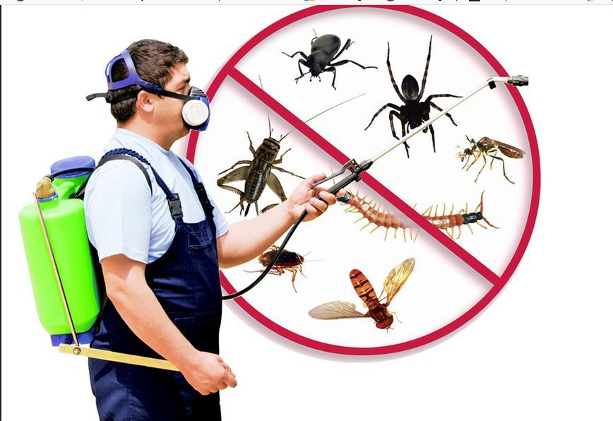 CAN Pest Control cover