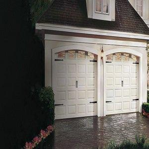 Lion Garage Door cover