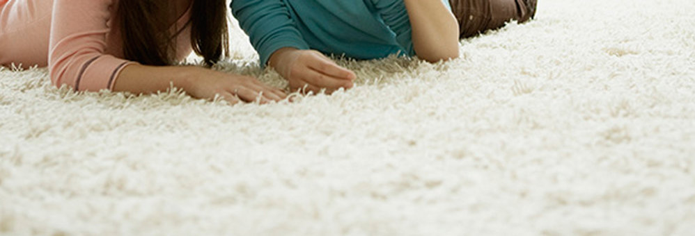 Spotless Carpet Steam Cleaning cover