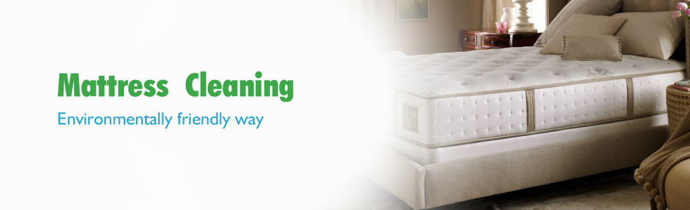 Fresh Mattress Cleaning cover
