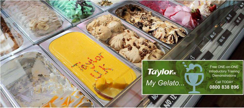 Taylor UK Catering Equipment Specialist cover