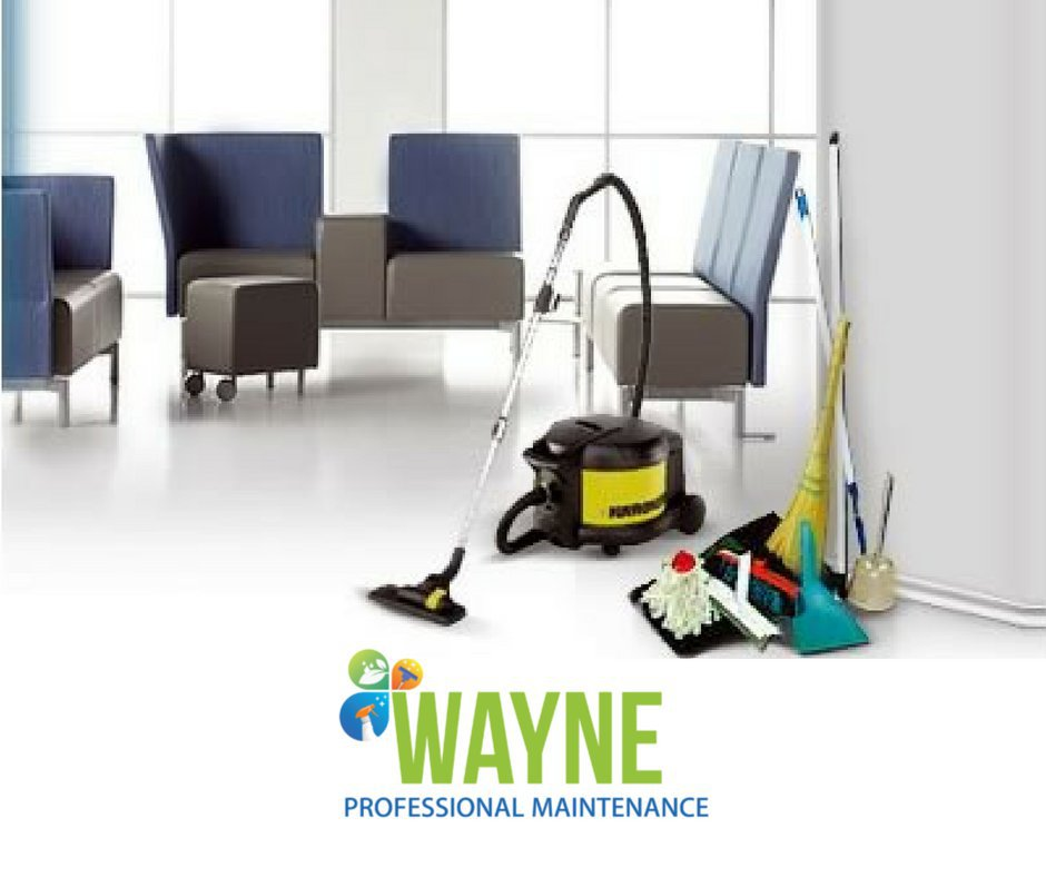 Wayne Professional Maintenance cover