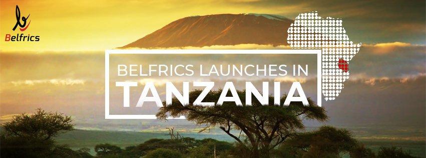 Belfrics Tanzania Ltd cover