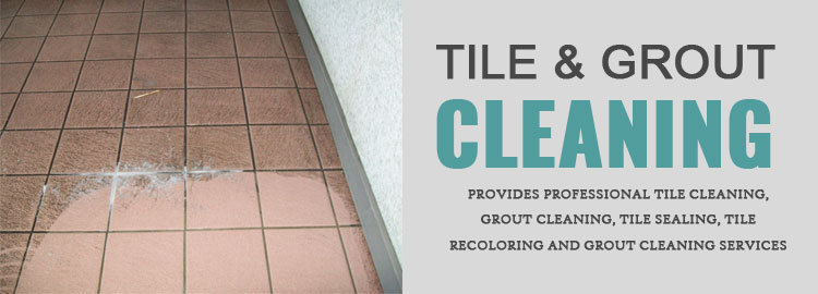 Fresh Tile Cleaning cover