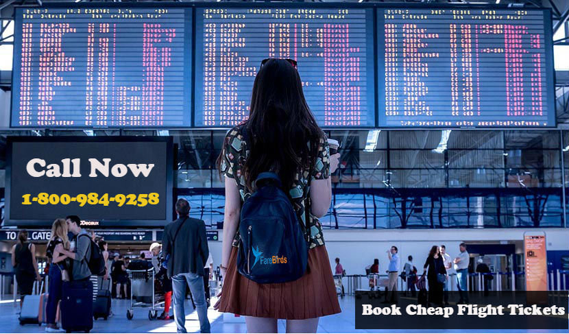 Cheap Flights Tickets - Book Cheap Airline Tickets Online at FareBirds cover