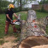 Martin Tree Service, LLC cover