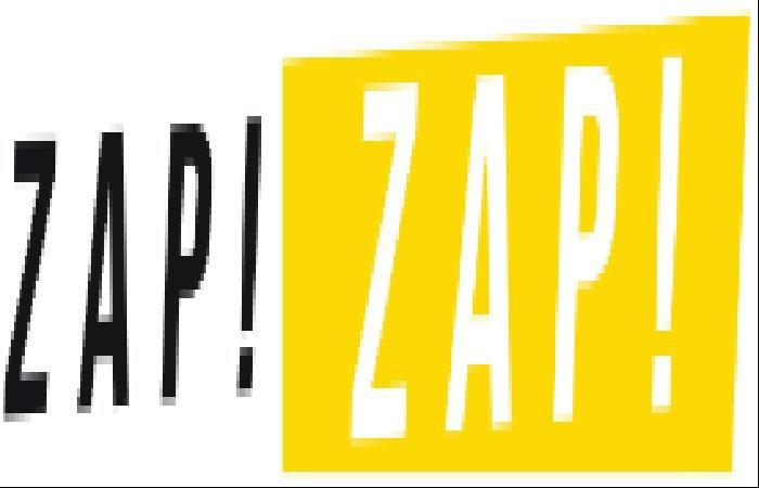 zapzapvietnam.com cover