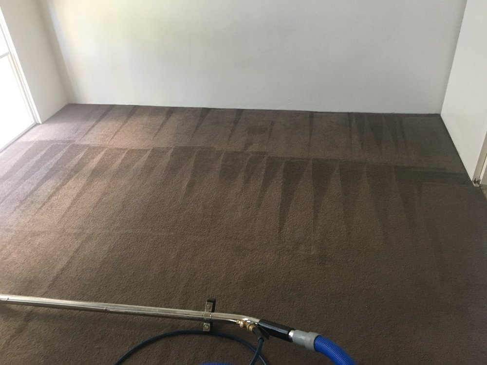 Fantastic Carpet Cleaning cover
