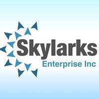Skylarks Enterprise Inc cover