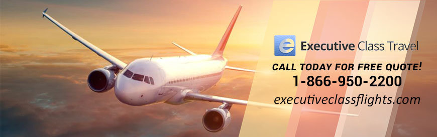 Executive Class Travel cover