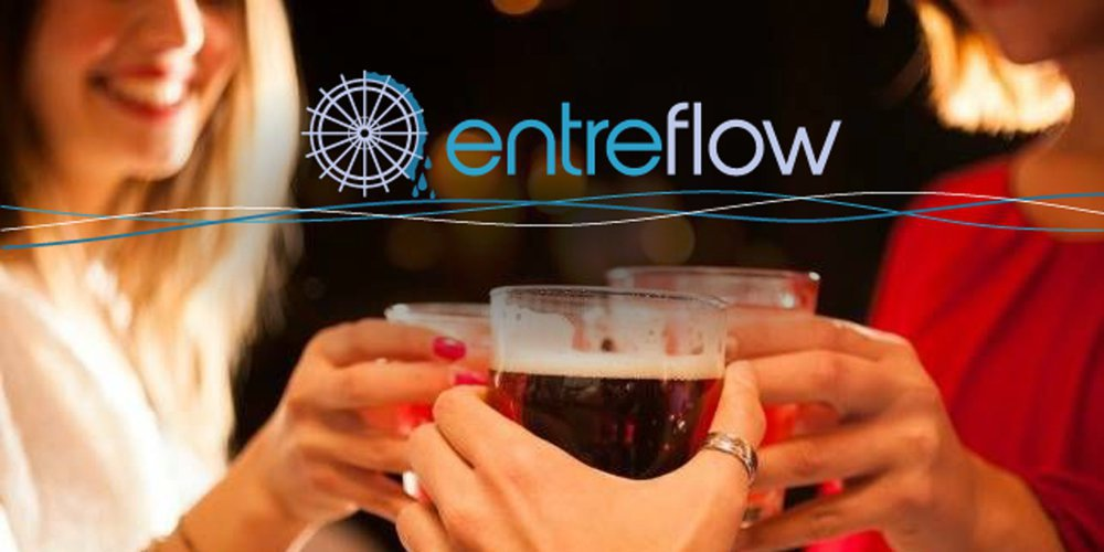 Entreflow Consulting Group cover