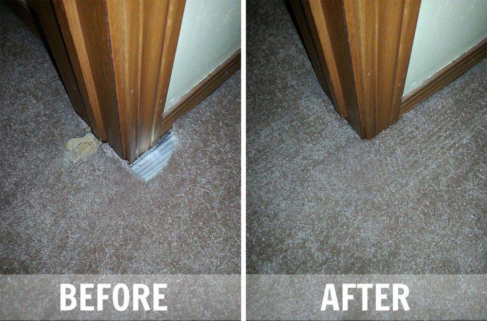 Creative Carpet Repair Jacksonville cover