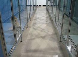 National Concrete Polishing cover
