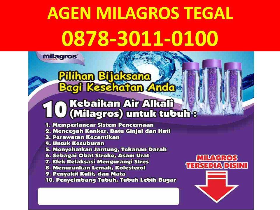 Agen Milagros Tegal WA: 0878-3011-0100 (Tsel) cover