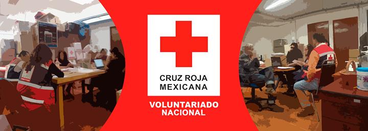 Coordinación Nacional Voluntariado - Sede Nacional cover