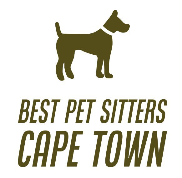 Best Pet Sitters Cape Town cover