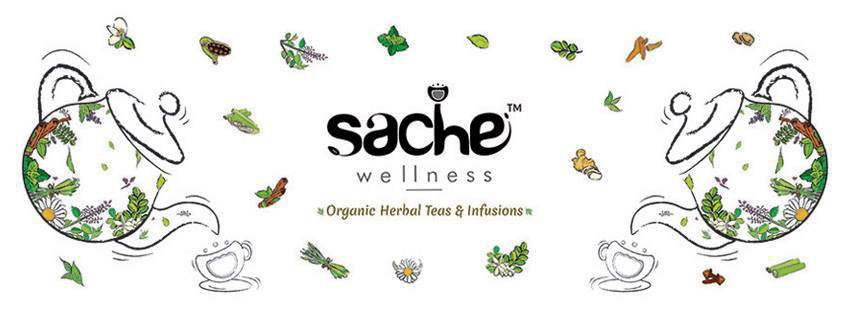 Sache Wellness Noida cover