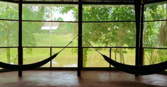CAYA SHOBO, AYAHUASCA HEALING RETREAT CENTRE cover