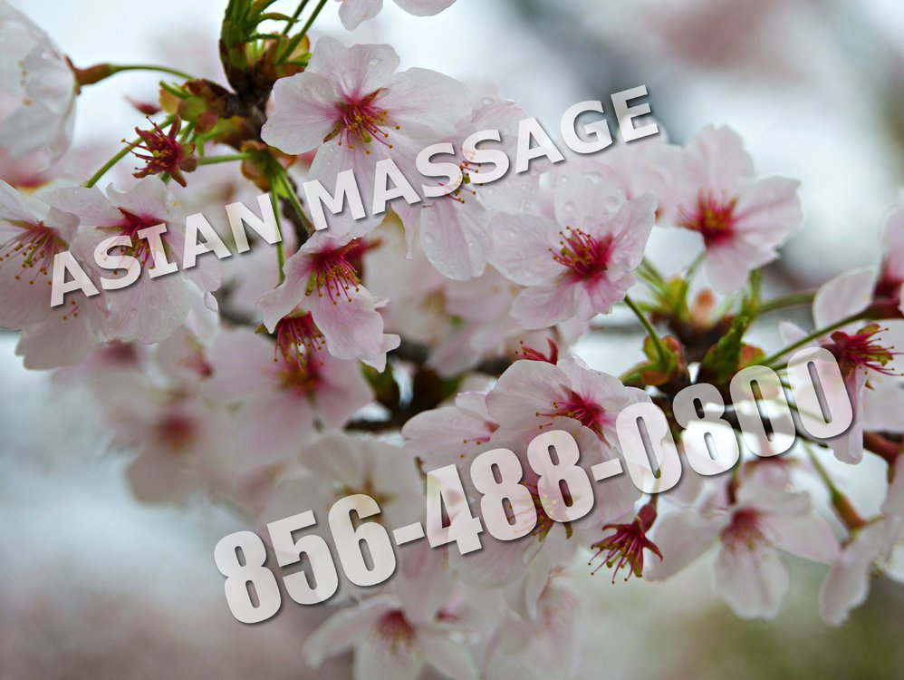ASIAN MASSAGE cover
