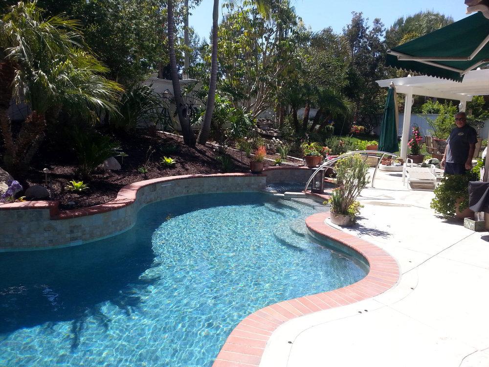 Plumeria Pools cover