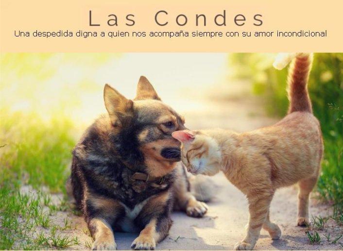LAS CONDES Cremación y Servicio Fúnebre de Mascotas cover