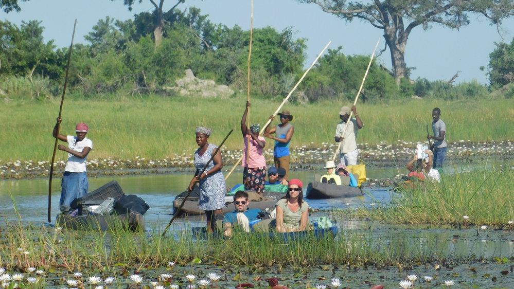 Shipungo Safari & Tours cover