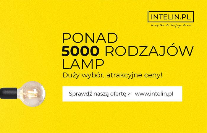intelin.pl cover