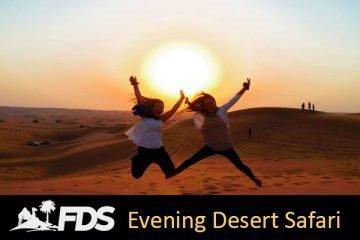 Fun Desert Safari cover