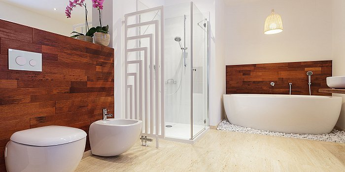 Modern Bathroom Remodel And Renovation Santa Clara cover