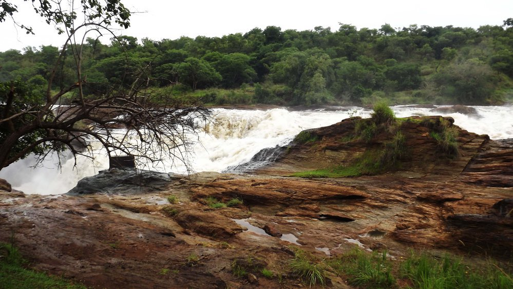 Murchison Falls National park cover