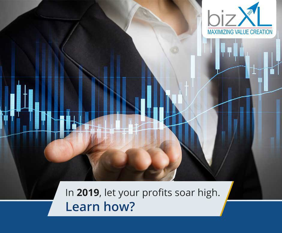 BizXL Solutions Inc. cover
