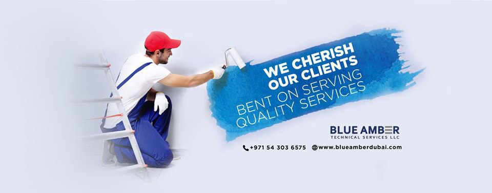 Blue Amber Technical Services cover