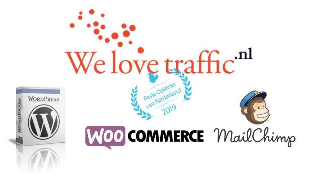 WeLoveTraffic.nl - SEO, Online Marketing & WordPress Cursussen cover