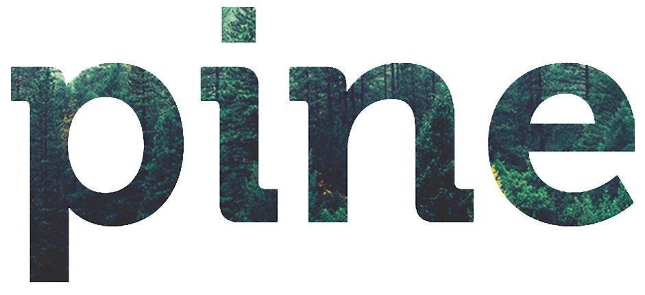 Pine srl cover