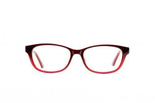 Just Bifocals cover