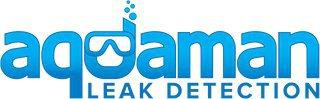 Aquaman Leak Detection cover