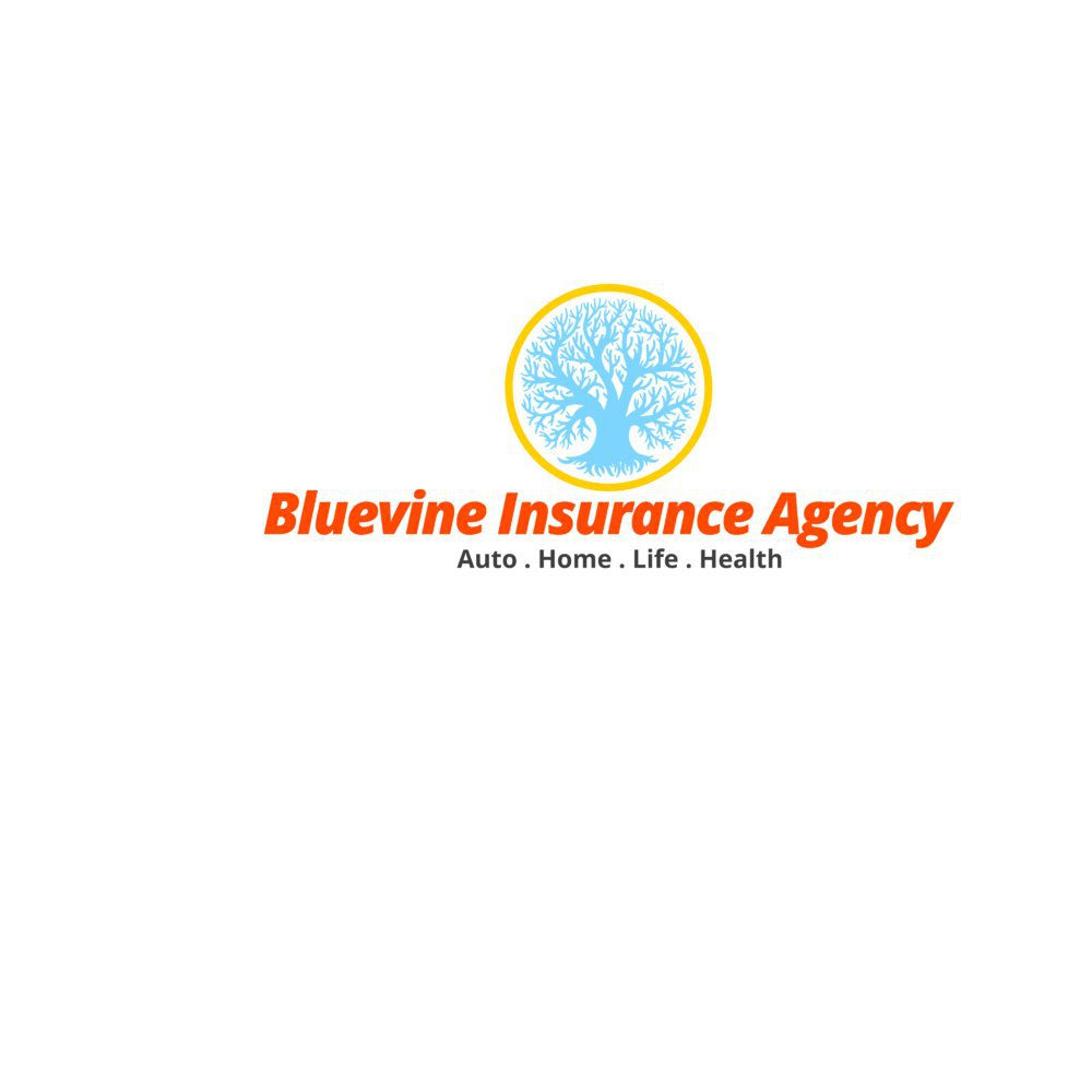 Bluevine Insurance Agency cover