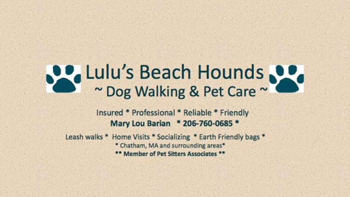 Lulu's Beach Hounds cover