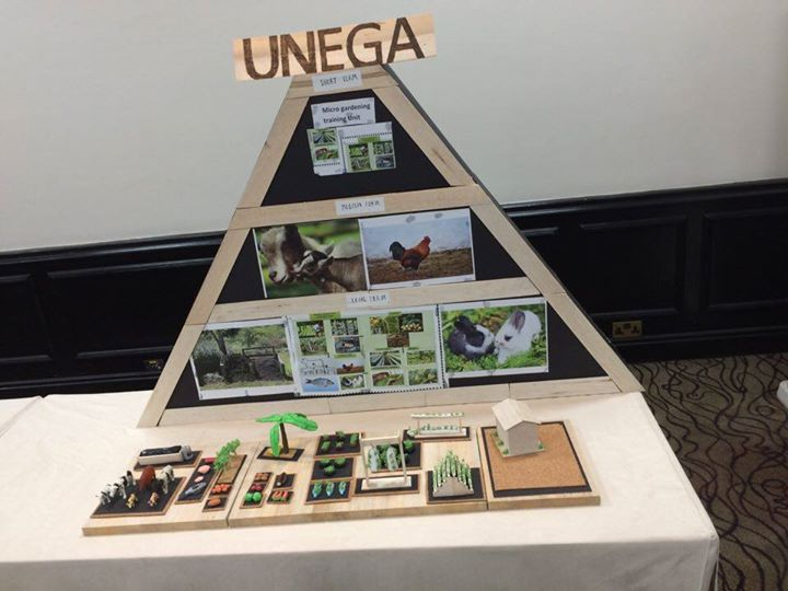 UNEGA Integrated FARM - Uganda cover