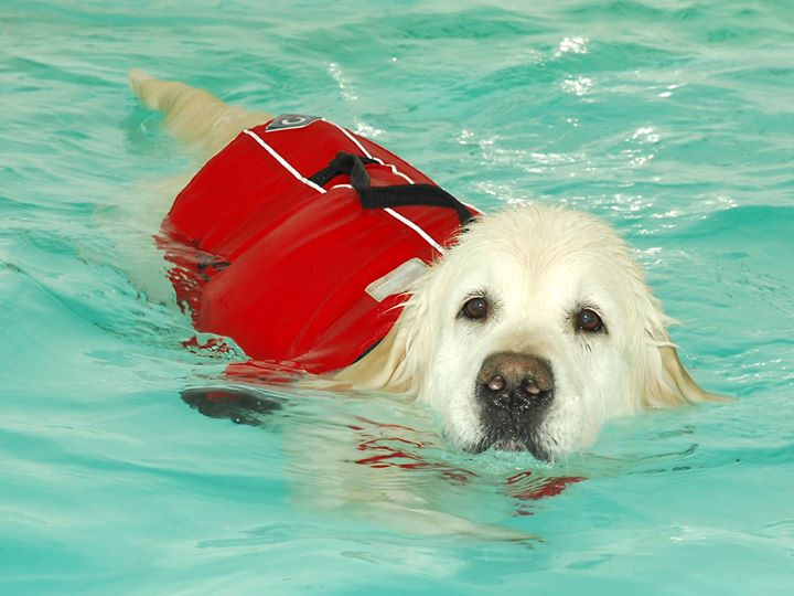 Hawksmoor Hydrotherapy cover