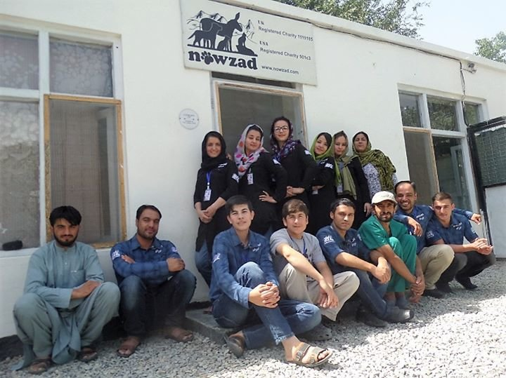 Nowzad cover