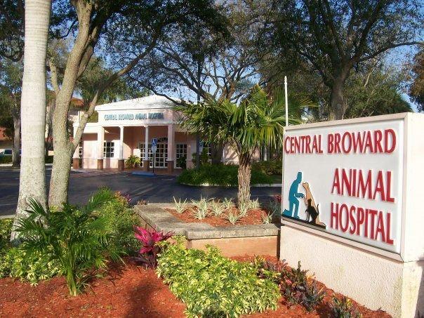 Central Broward Animal Hospital cover