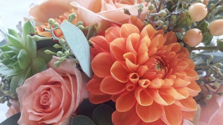 Lane Street Blooms cover
