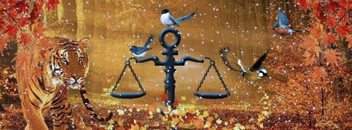 Rättviseförmedlingen cover