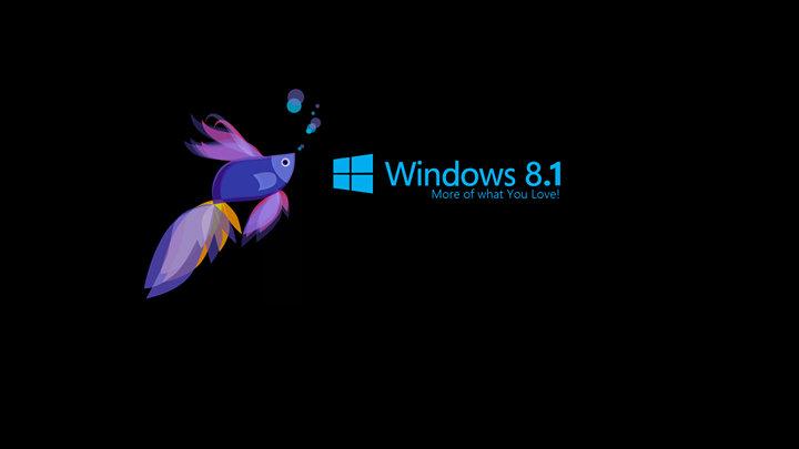 Windows 8.1 cover