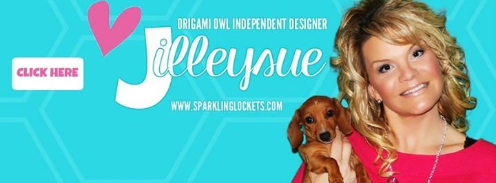 Jilleysue, Independent Consultant cover