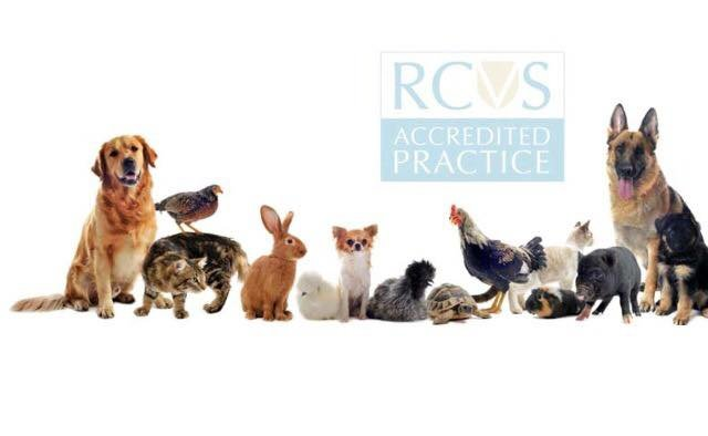 Melbourne & Mercia Veterinary Centre UK cover