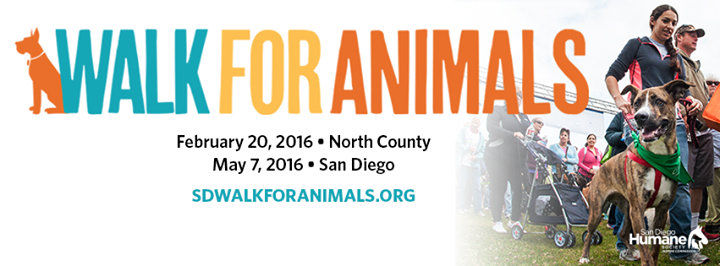 San Diego Humane Society's Walk for Animals cover