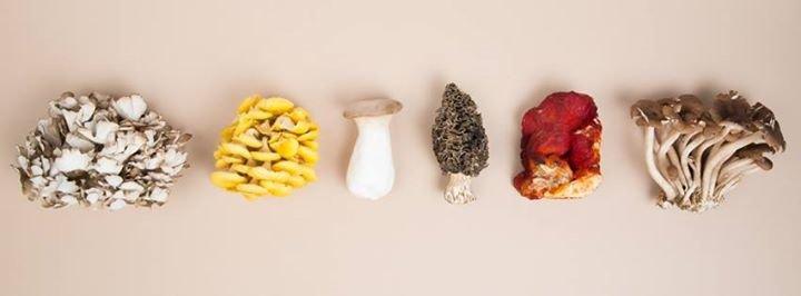 Baldor Specialty Foods cover